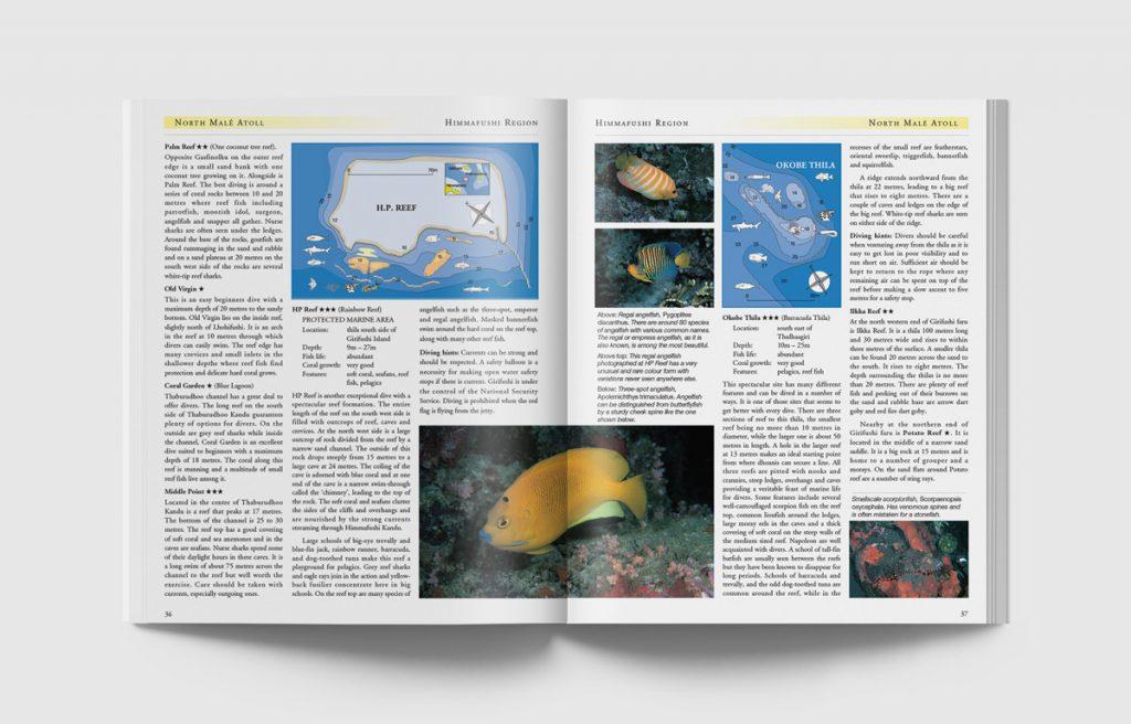 Dive-Maldives-36-37