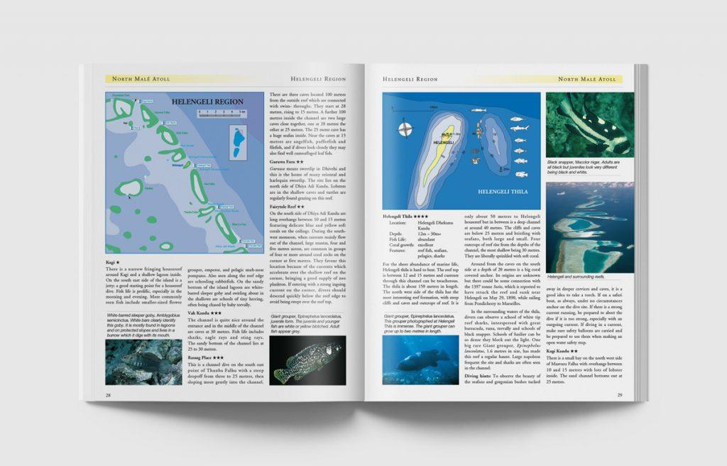 Dive-Maldives-28-29